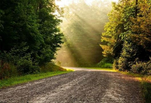 road and sunlight